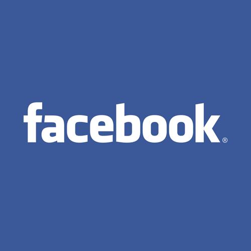 facebook ikon på efterskole