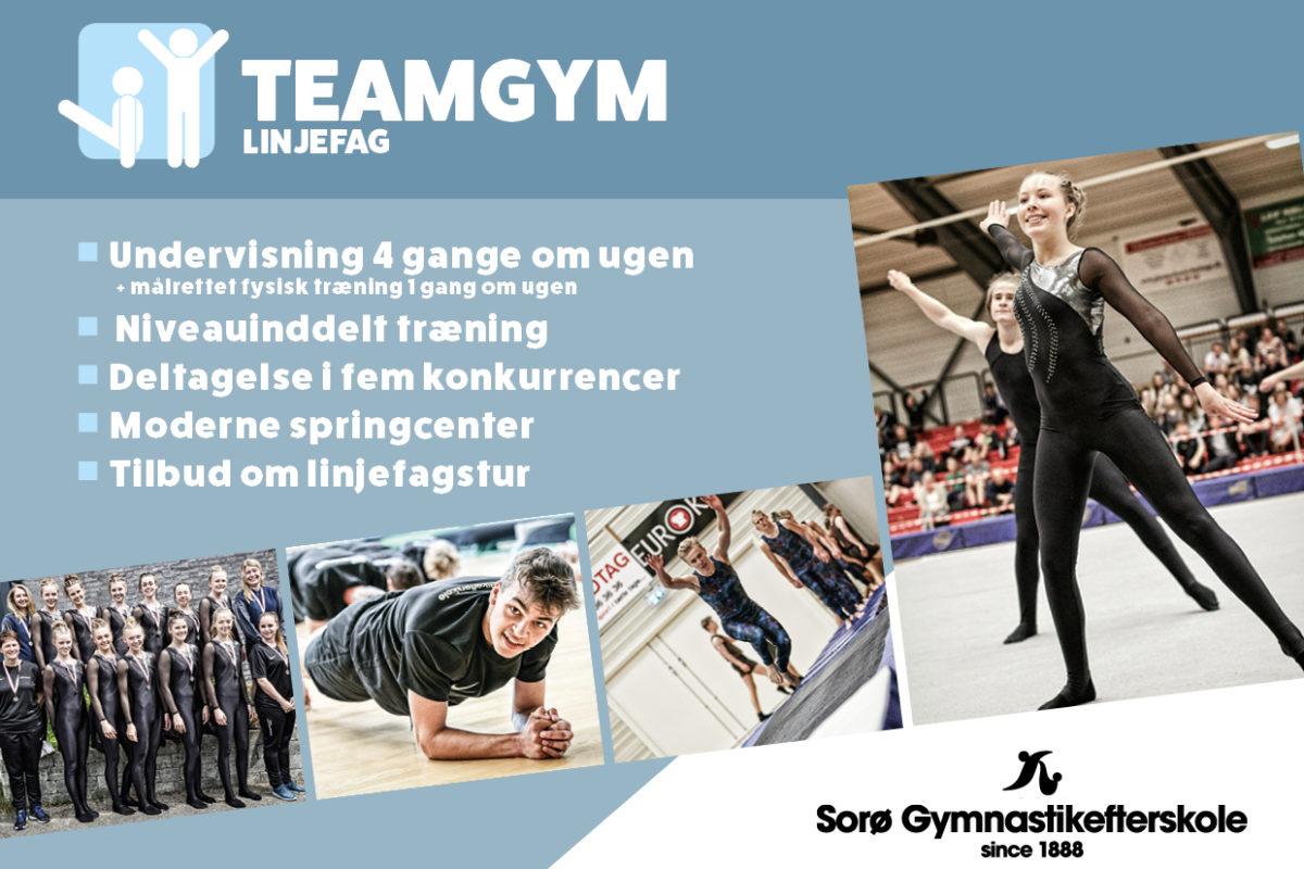Linjefag TeamGym